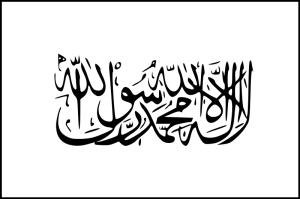 Taliban flag wiki