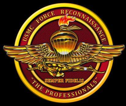 The Professionals Becoming A Recon Marine The Havok Journal