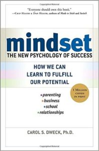 Mindset, an unorthodox addition to a professional reading list